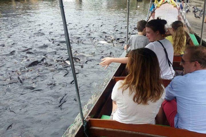 Bangkok Boat - Photo Gallery 12